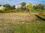 plotting land for sale in lubhu-3