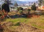 ropani land for sale in godawari (1 of 6)