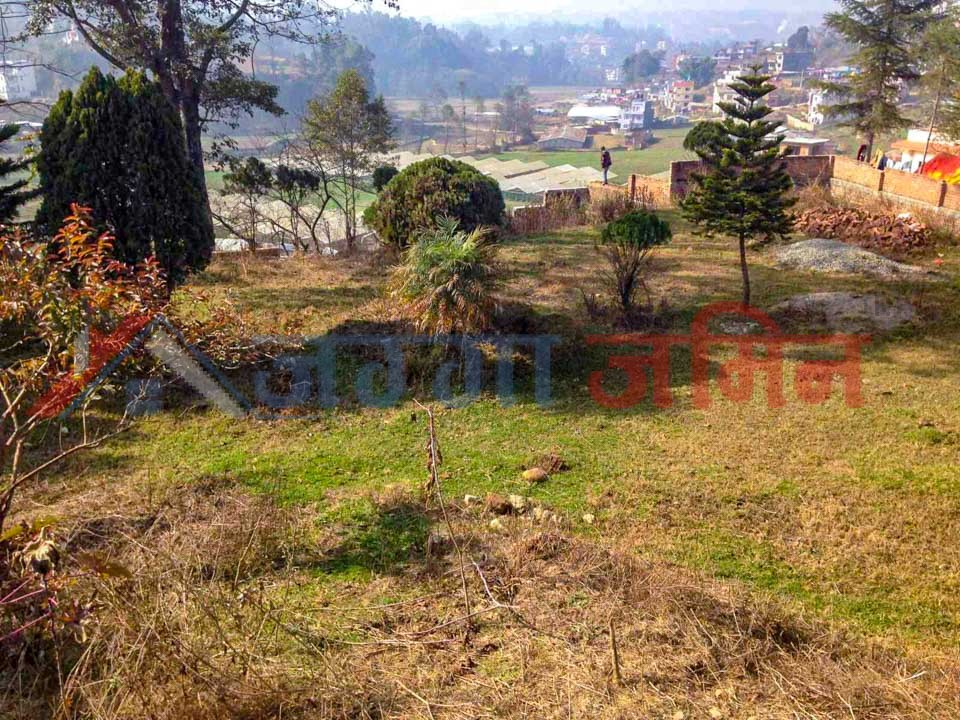 commercial land in cheap price