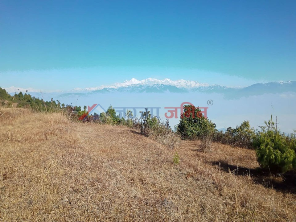 buy land in kakani