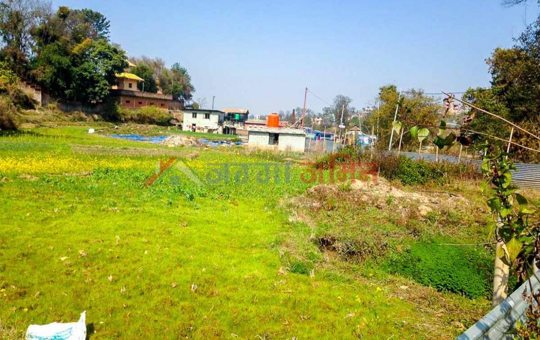 buy land in kitini godawari