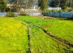 1 ropani land for sale in taukhel godawari-7