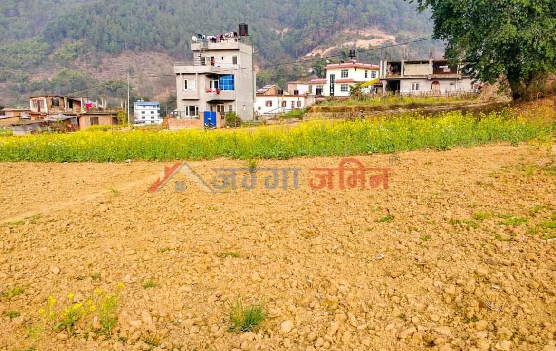 buy land in godawari nepal