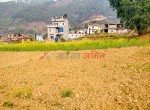 19 aana land for sale in badikhel godawari-1