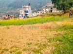 19 aana land for sale in badikhel godawari-2
