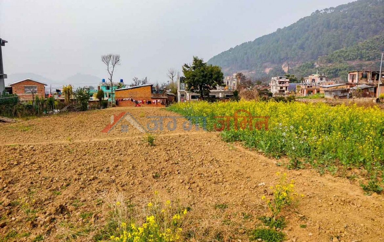 buy cheap land in nepal