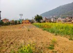 19 aana land for sale in badikhel godawari-5