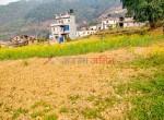 19 aana land for sale in badikhel godawari-6