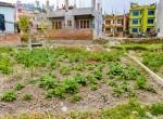 5 aana land for sale in gongabu-1-2