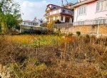 8 aana land for sale in pasikot budhanilkantha (2 of 14)