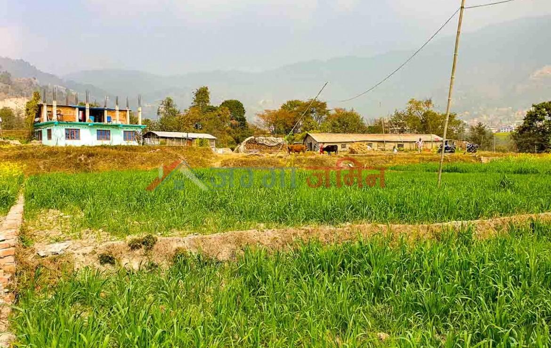 buy land in sangla