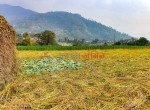 8 aana land sangla tarkeshwar new pics-1