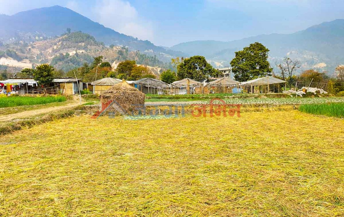 flat land for sale in nepal