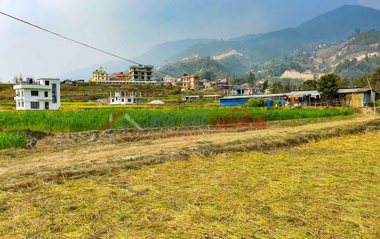 land for sale near tokha