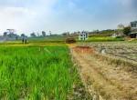 8 aana land sangla tarkeshwar new pics-3