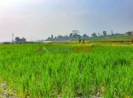 8 aana land sangla tarkeshwar new pics-4
