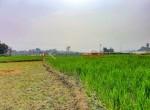 8 aana land sangla tarkeshwar new pics-5
