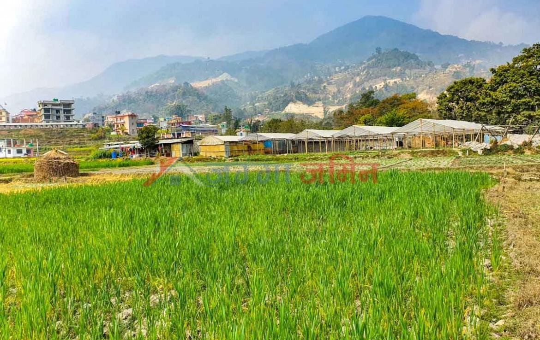 residential land in kathmandu nepal