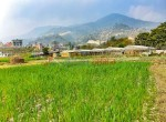 8 aana land sangla tarkeshwar new pics-6