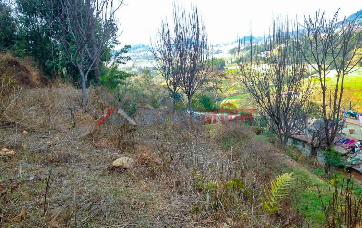 cheap land for sale in nepal