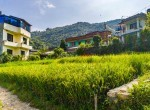 5 aana land for sale in syuchatar-1-2