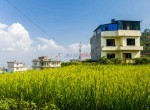 5 aana land for sale in syuchatar-5