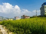 5 aana land for sale in syuchatar-6