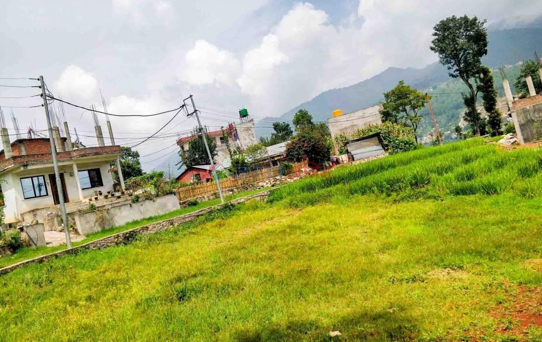 land near kalanki