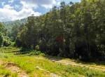 land for sale in godawari-15