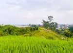 land for sale in kavresthali (5 of 16)