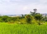 land for sale in kavresthali (7 of 16)