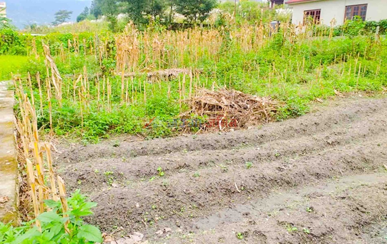 cheap land for sale in kathmandu