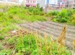 land for sale in megacity tarkeshwar (3 of 3)