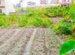 land for sale in megacity tarkeshwar (9 of 15)