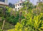 land for sale in sangla tarkeshwar (1 of 5)