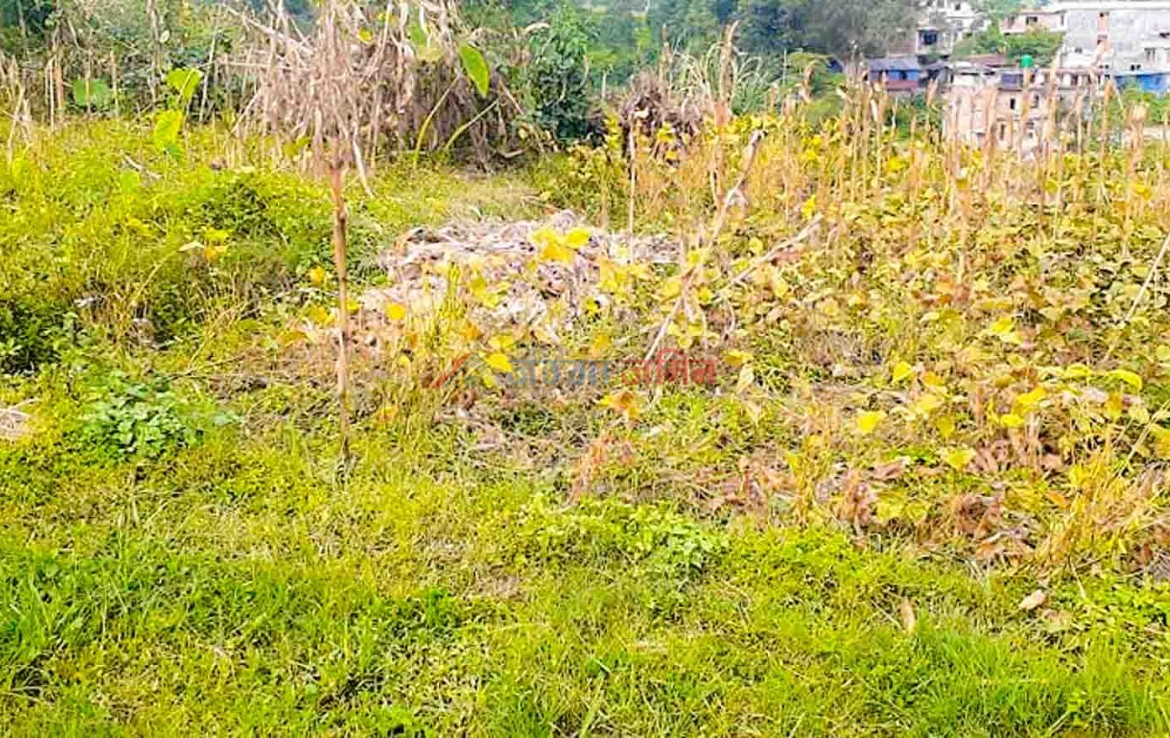 cheap land for sale