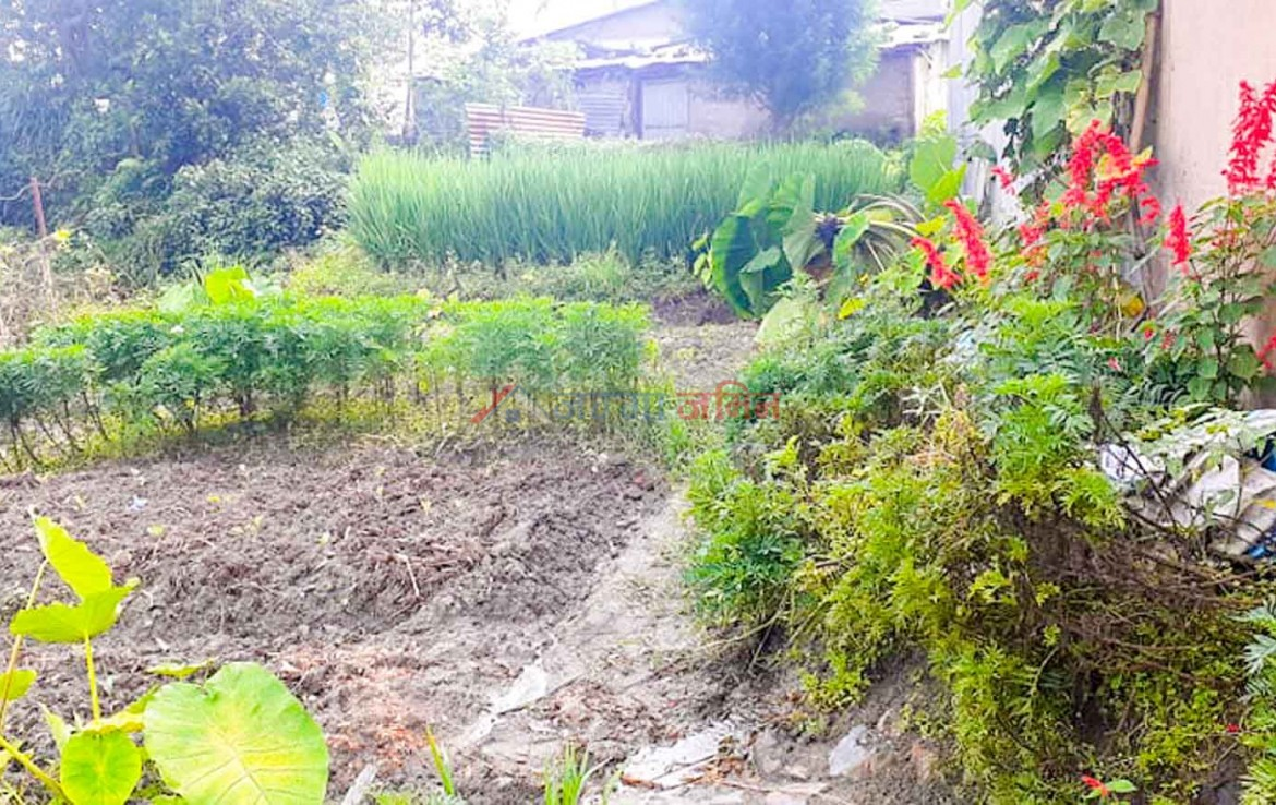 land for sale in sangla