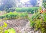 land for sale in sangla tarkeshwar (3 of 4)