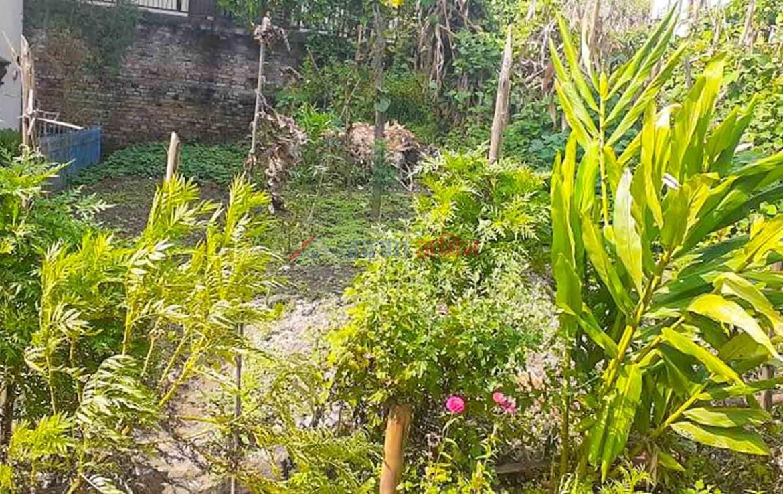 land for sale in tarkeshwar