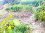 land for sale in sangla tarkeshwar (4 of 4)