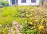 land for sale in sangla tarkeshwar (6 of 8)