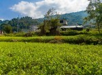 land for sale in syuchatar add-2