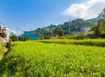 land for sale in syuchatar add-3