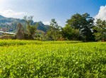 land for sale in syuchatar add-4
