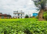 land sale in syuchatar, Kathmandu (4 of 12)