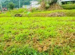 land sale in syuchatar, Kathmandu (5 of 12)