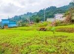 land sale in syuchatar, Kathmandu (9 of 12)