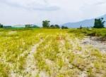 plotting land at panchetar tokha (1 of 20)