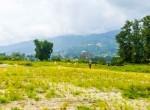 plotting land at panchetar tokha (10 of 20)