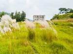 plotting land at panchetar tokha (2 of 14)